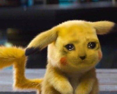 crying cat meme